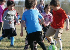 Minor soccer going ahead in August