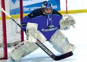 Icedogs  undefeated; roll over Fox Creek two more times