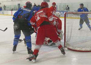 Icedogs face rival Red Wings: end winning streak