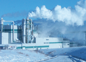 Pulp mill continues 'above world class' in uncertain times