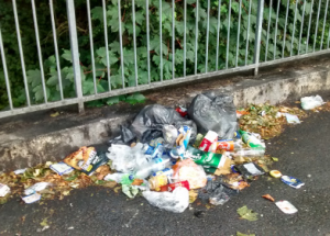 How the new town council can solve the litter problem